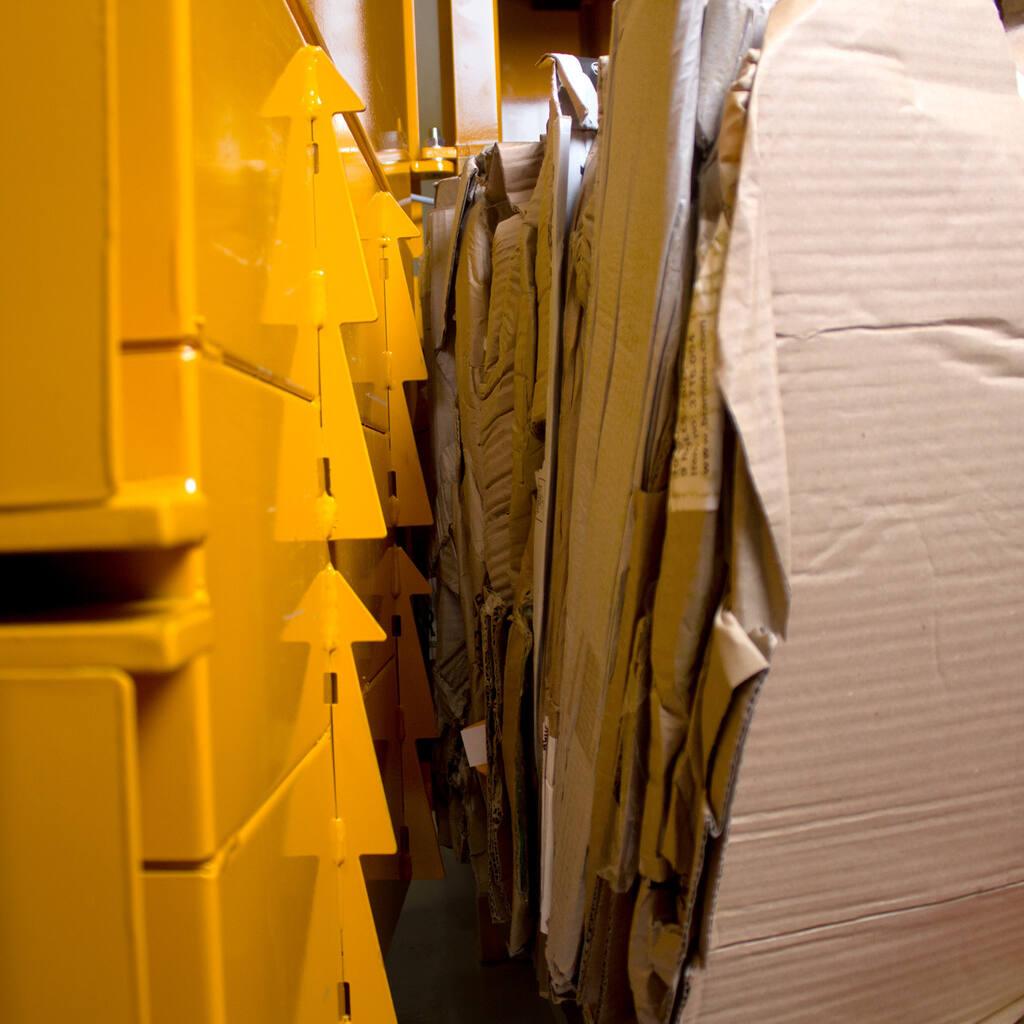 No6-Bramidan-B3-barbs-and-cardboard-img-3581-1500x1500.jpg